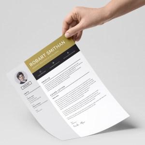 Stylish Resume Templates