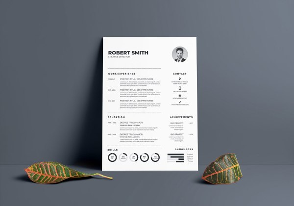 Regular Vector Resume Template