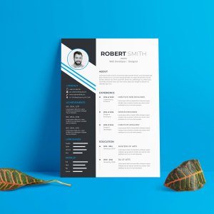 EPS Elegant Resume Design