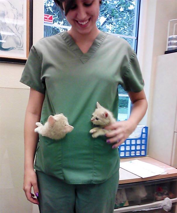 These Pictures Will Make You Want To Work At An Animal Hospital30