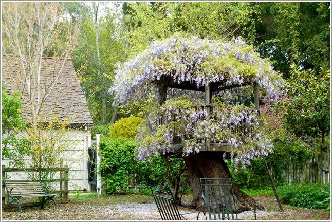 10 Interesting Ways You Can Use Tree Stumps (2)