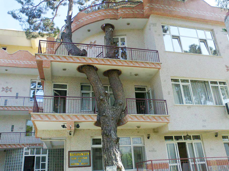 Architects Who Did NOT Destroy Nature To Make Buildings (2)