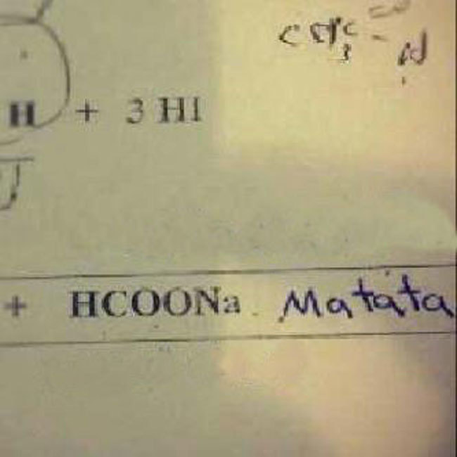 Exam Answers That Wrong But Pure Genuis (7)