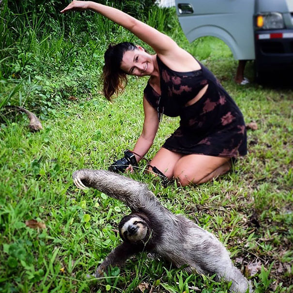 15 Animals Who Are Here To Give You Some Yoga Goals (12)
