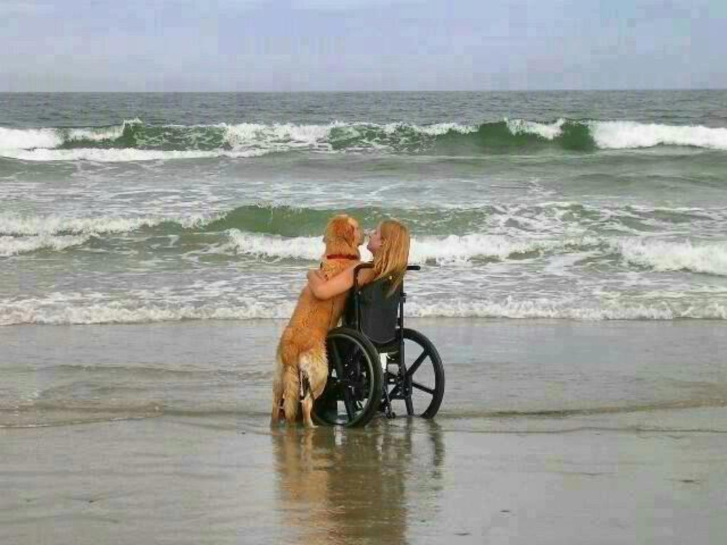 20 Photos That Are Sure To leave You Teary-Eyed (1)