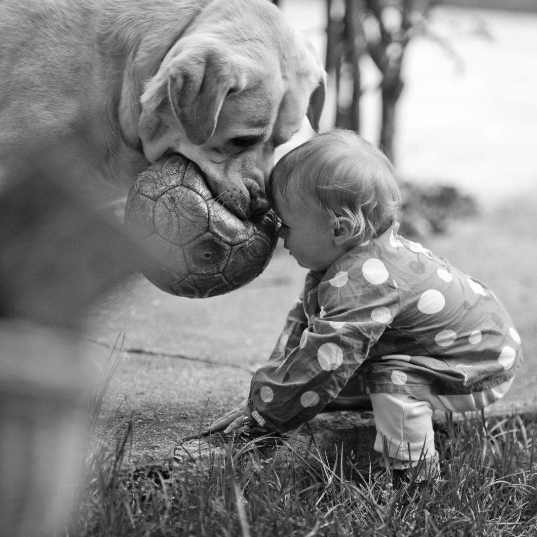 20 Photos That Are Sure To leave You Teary-Eyed (2)