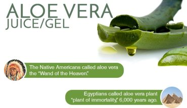 12 Reasons Why Aloe Vera Can Up Your Beauty & Health Game