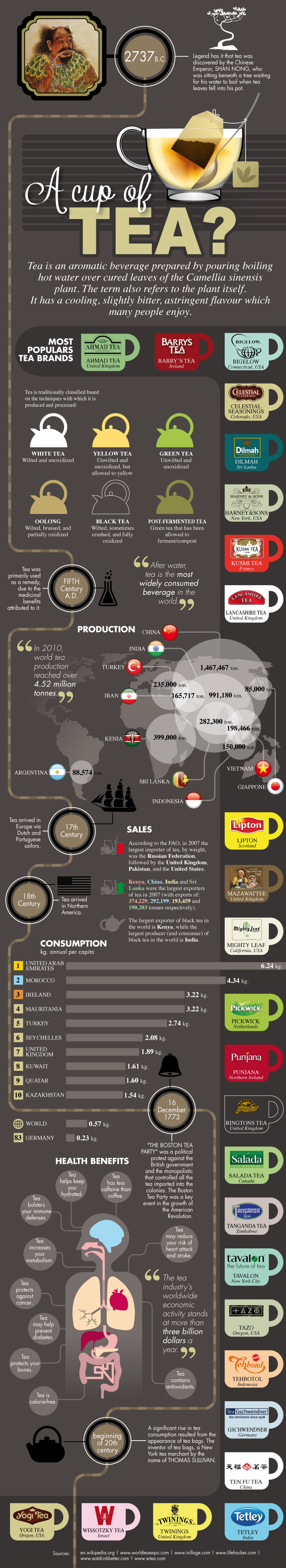 Everything You Need To Know About Tea - Infographic