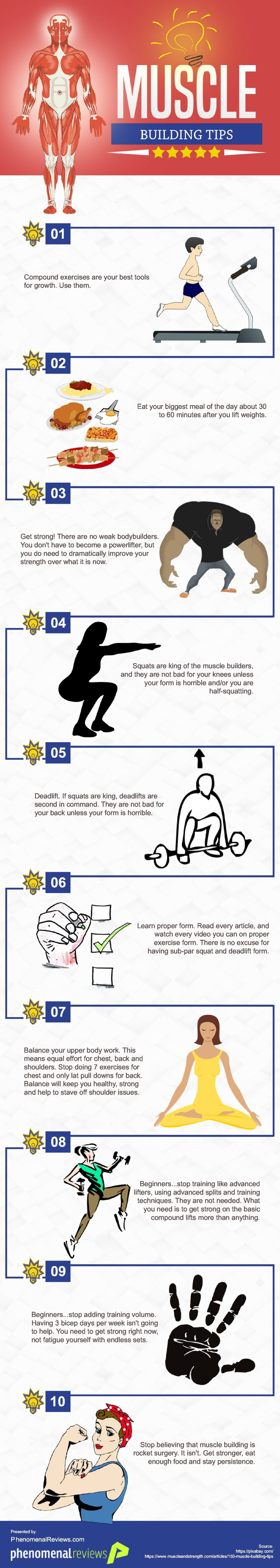 Muscle Building Hacks - Infographic