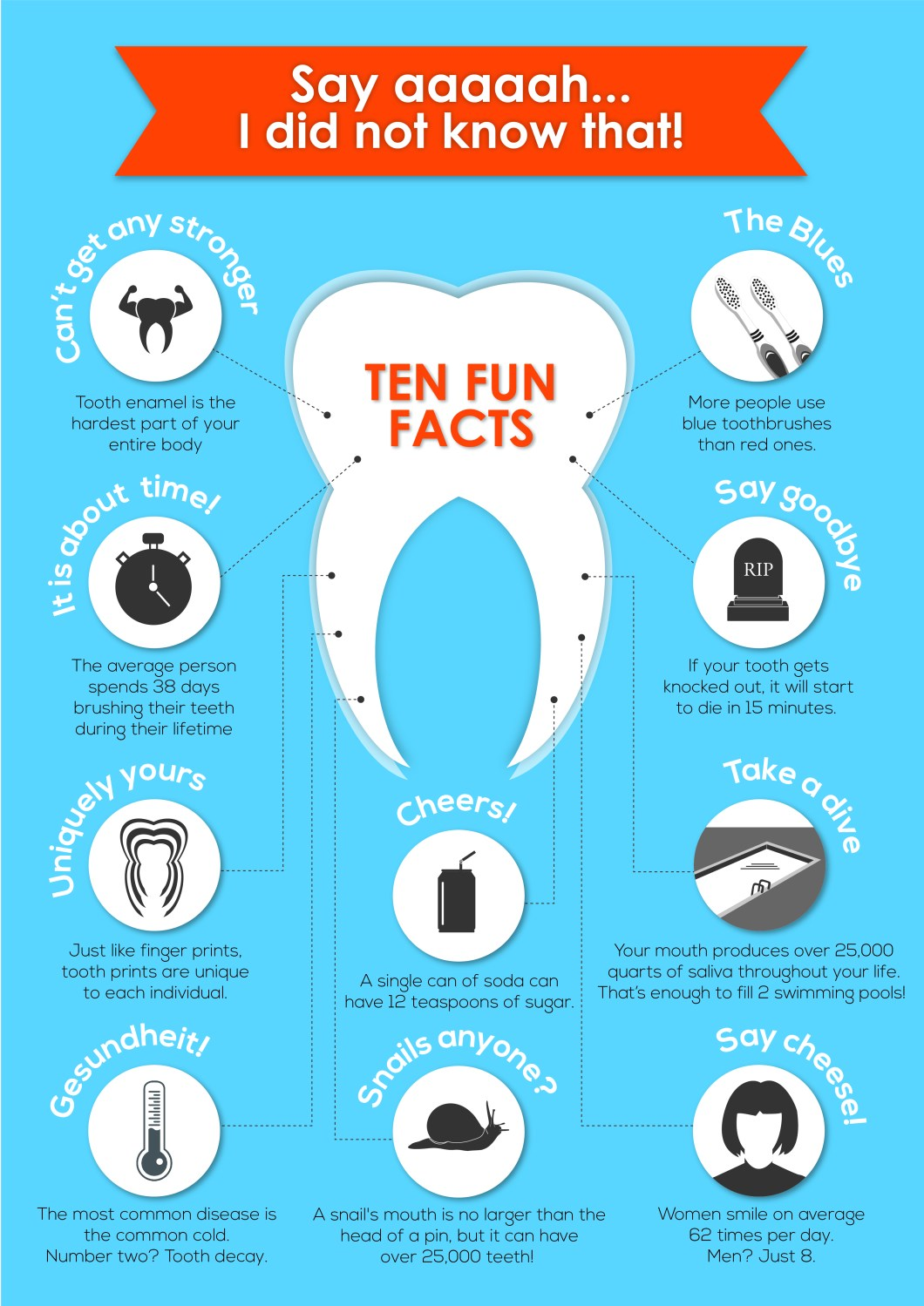 What You Don't Know About Your Teeth - Infographic