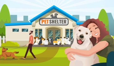 What You Can Do To Help The Pet Shelters - Infographic