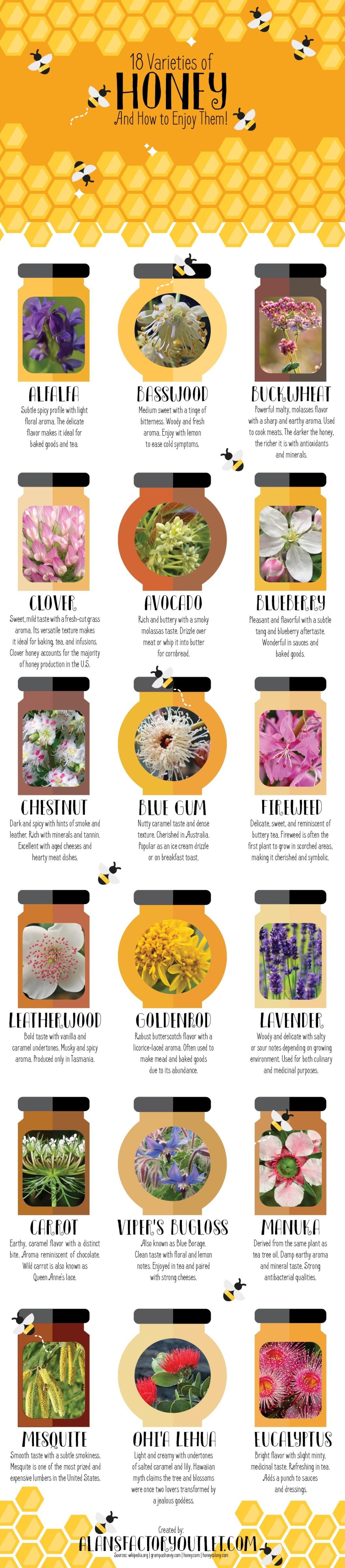18 Honey Varieties from Around the World - Infographic