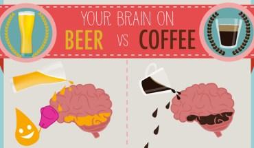 Beer Brain Vs Coffee Brain: The Scientific Truth - Infographic