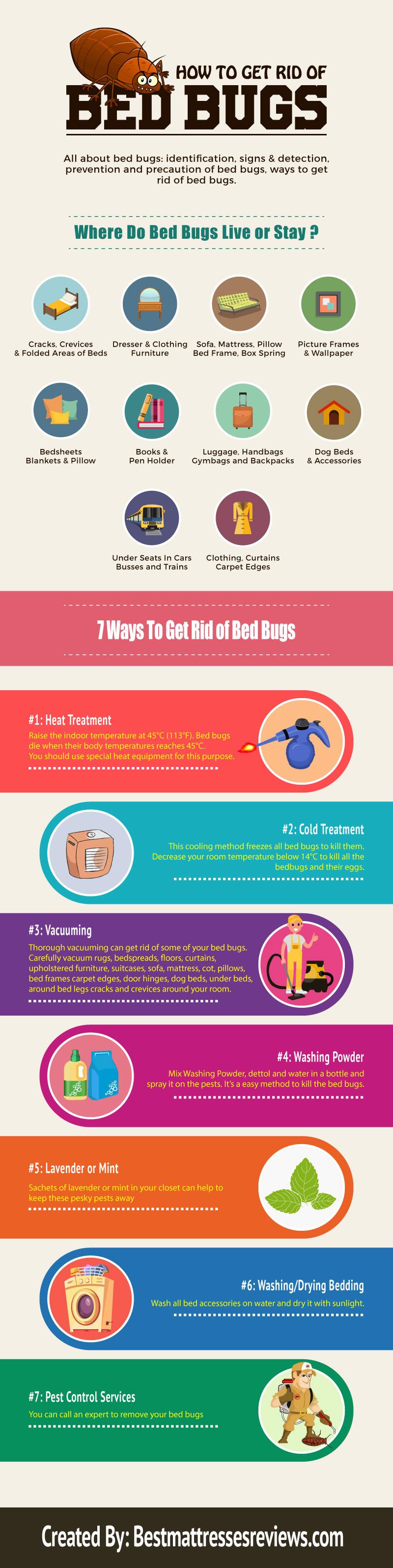 7 Practical Methods to Eradicate Bedbugs - Infographic
