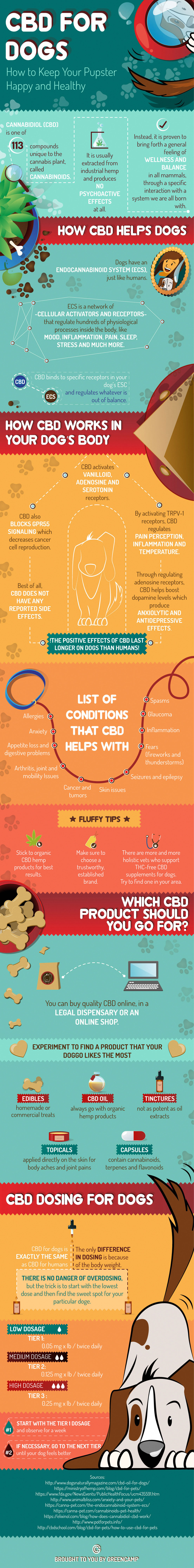 Why Some Forms of Cannabis Can Be Good for Dogs - Infographic