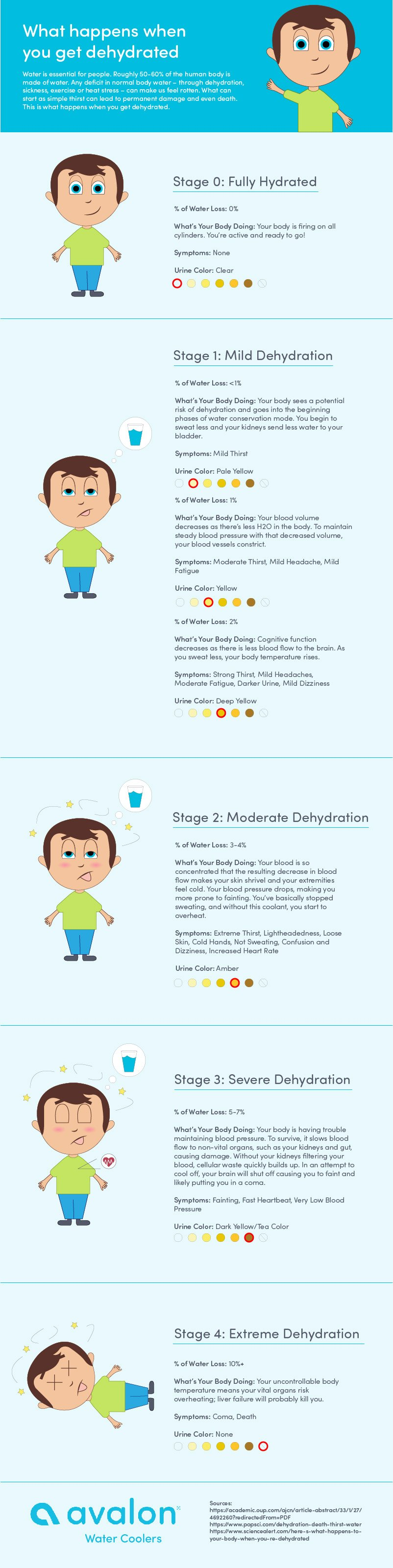The Physical Dangers of Dehydration - Infographic