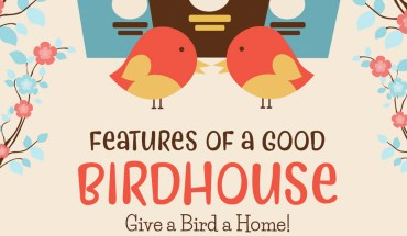 Bring the Birds Home: How to Build a Good Birdhouse - Infographic