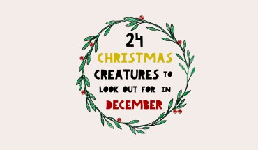 24 Bizarre Christmas Creatures You Didn't Know About! - Infographic