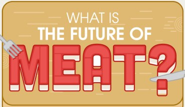 Feeding the Future: Sustainable Meat Alternatives - Infographic