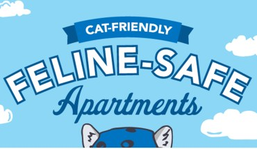 How to Make Your Apartment Cat-Friendly - Infographic