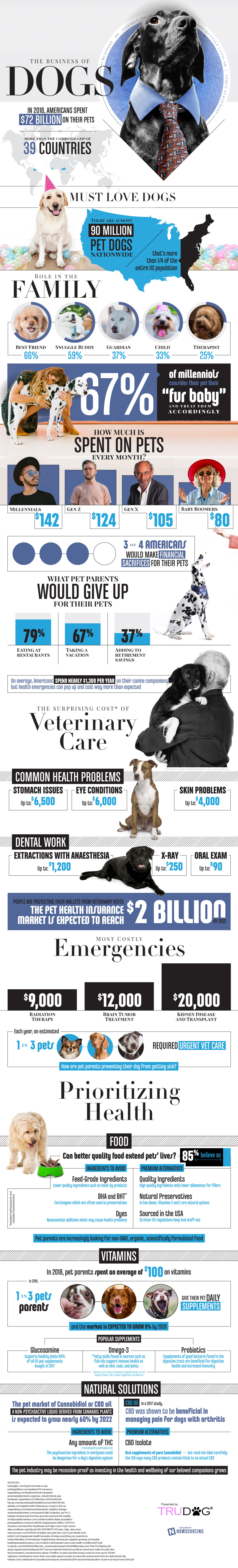 How Much Dog Owners Contribute to the Economy - Infographic