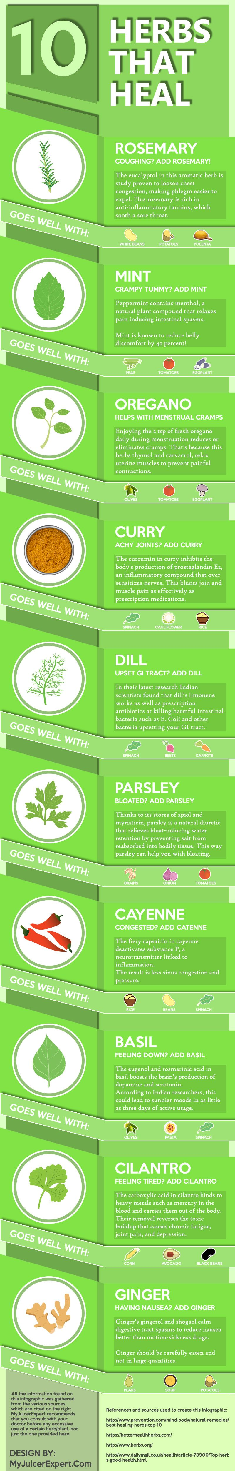 The All-Natural Medicine Chest: Power of 10 Healing Herbs - Infographic