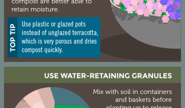 How to Save Water Yet Keep Your Garden Fertile - Infographic