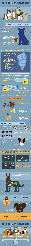 Dog Breed Behavior Patterns: Myths Vs Scientific Truth - Infographic