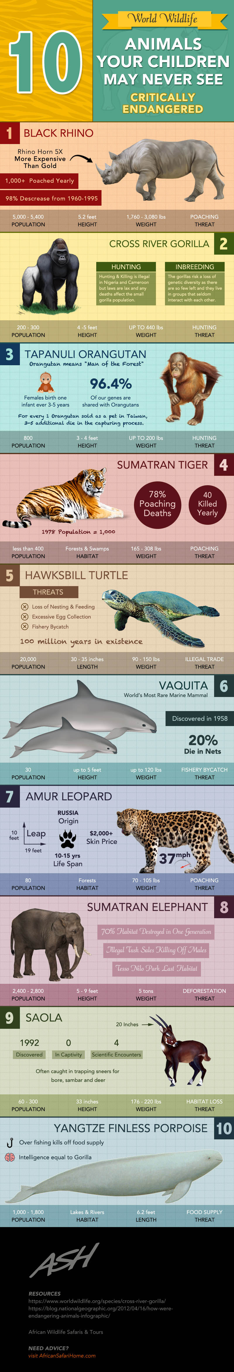 Extinction Alert: 10 Well-Known Animals That Future Generations Won't See - Infographic