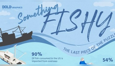 USA Edition: Interesting Facts About Import And Export Of The Fishing Business - Infographic