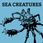 sea-creatures-font-shapes-draw-1
