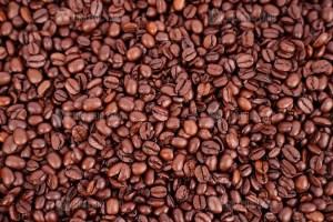 Shiny coffee beans stock photo