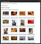 photoshelter-select-image-to-embed