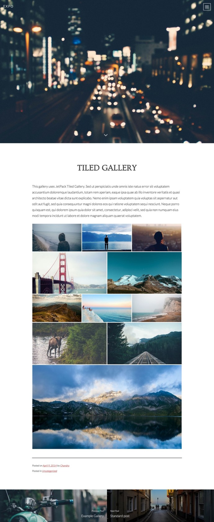 Expo WordPress theme - single gallery