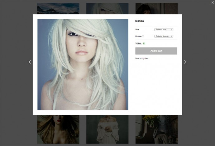 The Sell Media plugin enables anyone to sell images directly from their own independent website.