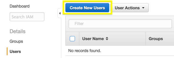 The Create New User button in the AWS dashboard.
