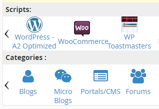 The option to install WordPress through the cPanel.