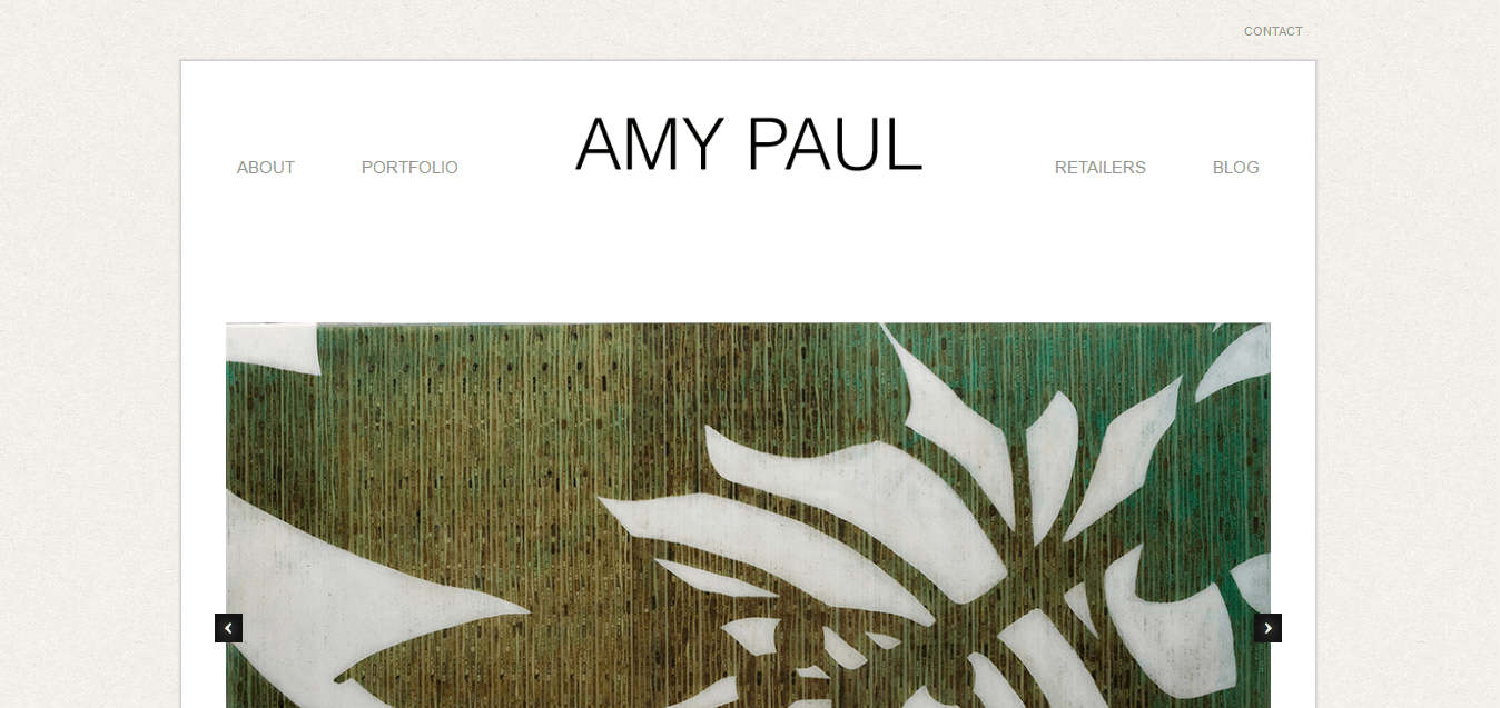 Amy Paul Photography homepage