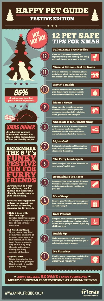 Top 12 Tips for Pet Safe Chirstmas - Infographics | Graphs.net