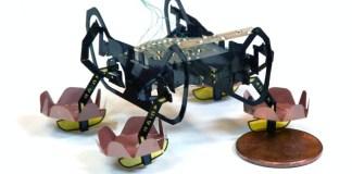 Robotic cockroach from Harvard can now walks underwater