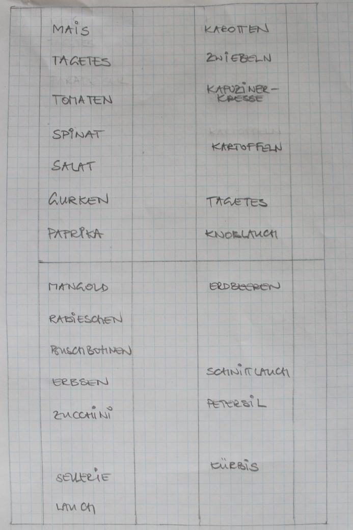 (c) Grashüpfer, Gemüsebeet-Plan