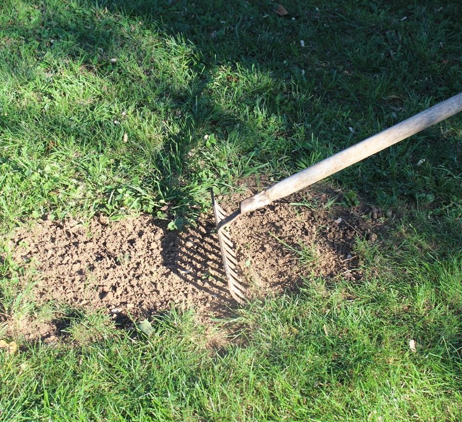 Rasen reparieren - Erde auflockern