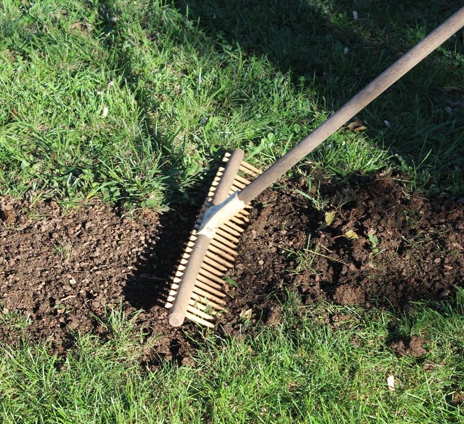 Rasen reparieren
