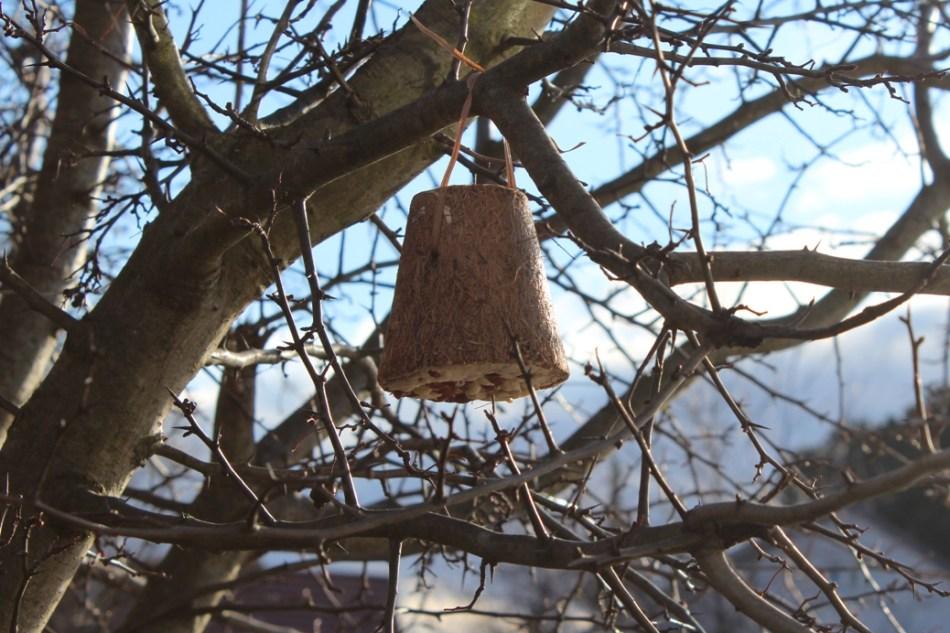 Vogelfreundlicher Garten: futterglocke