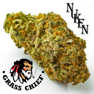 Buy Nuken Indica Dominant Hybrid on Grass Chief