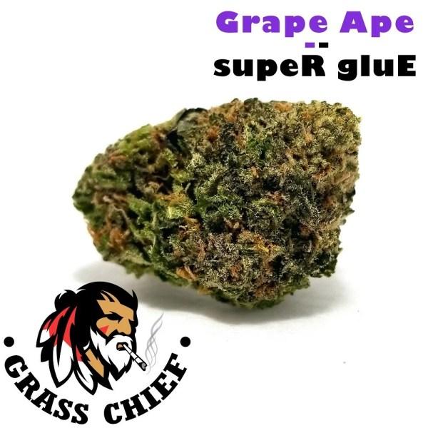 Grape-Ape-x-Super-Glue-2-Grass-Chief
