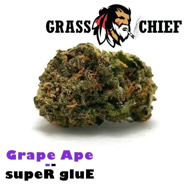 Grape-Ape-x-Super-Glue-4-Grass-Chief