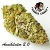 Annihilator-2.0-Grass-Chief