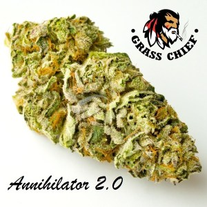 Annihilator-2.0-Grass-Chief