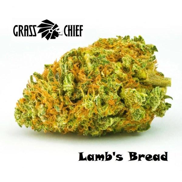 Lamb's Bread on Grass Chief